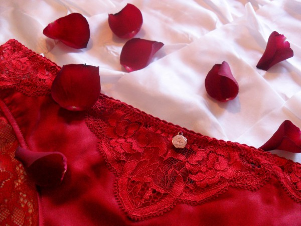 rosie-for-autograph-silk-and-lace-brazilian-knickers-review-600x450